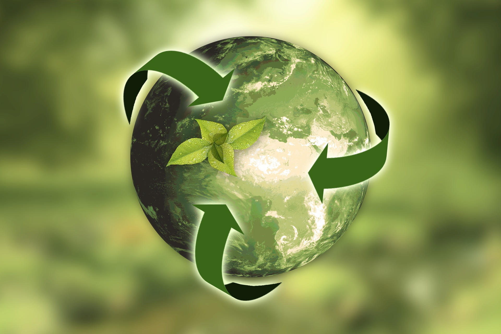LifeSource Natural Foods | Commitment to Sustainability