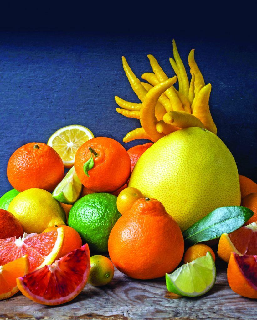 Still Life Citrus Variety