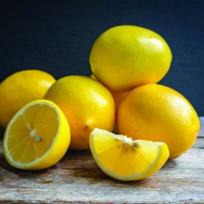 Meyer-Lemon