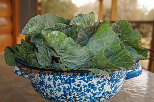 Collard Greens In A Bowl