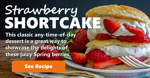 Recipe Strawberry Shortcake