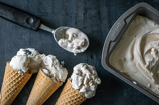 Coconut Coffee Ice Cream LifeSource Recipes