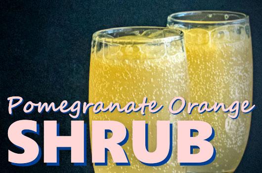 Pomegranate Orange Shrub