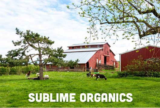 A Visit With Sublime Organics